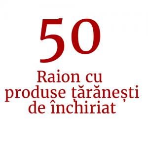 Raion cu produse țărănești de închiriat (50 de standuri)